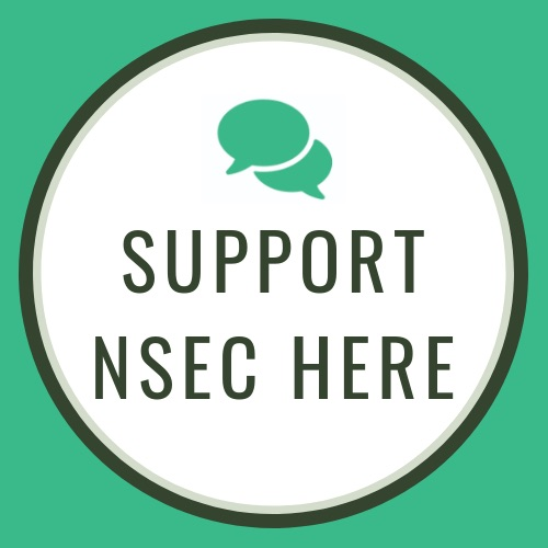 Support NSEC